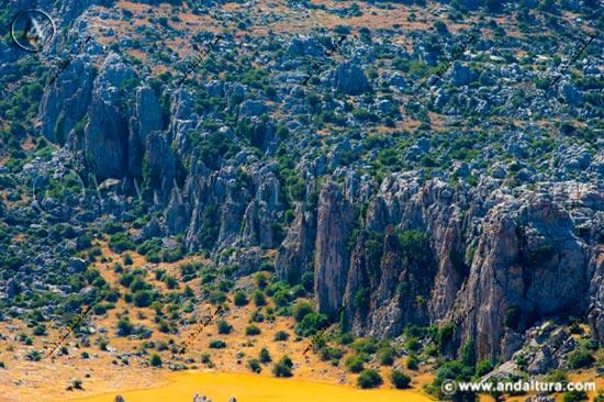 Acceso a los Contenidos de los Espacios Naturales Protegidos de Andalucía