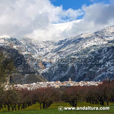 Accesos a las Provincias, Capitales, Comarcas y Municipios de Andalucía