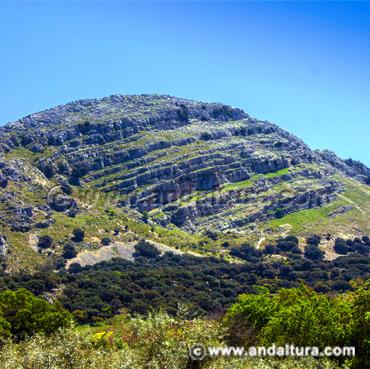 Acceso a los Contenidos del Relieve de Andalucía