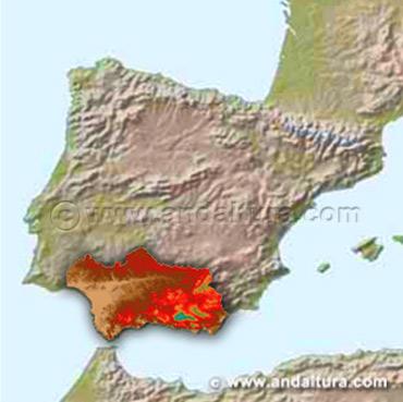 Acceso a los Contenidos de la Situación de Andalucía
