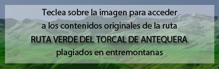 Ruta Plagiada de la Ruta Verde por el Torcal de Antequera de Andaltura en entremontanas