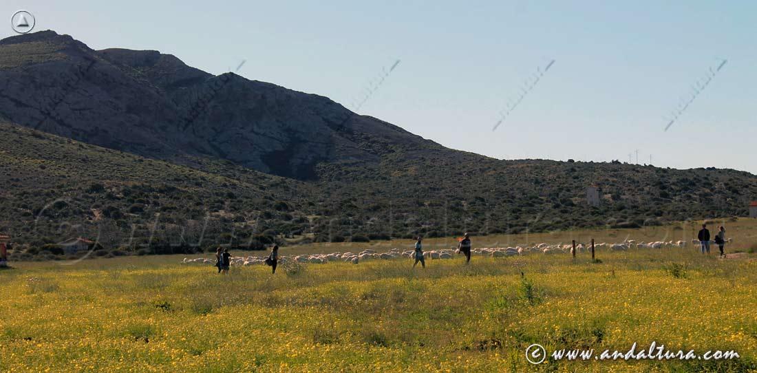 Ruta de Senderismo por Los Genoveses - Cabo de Gata -