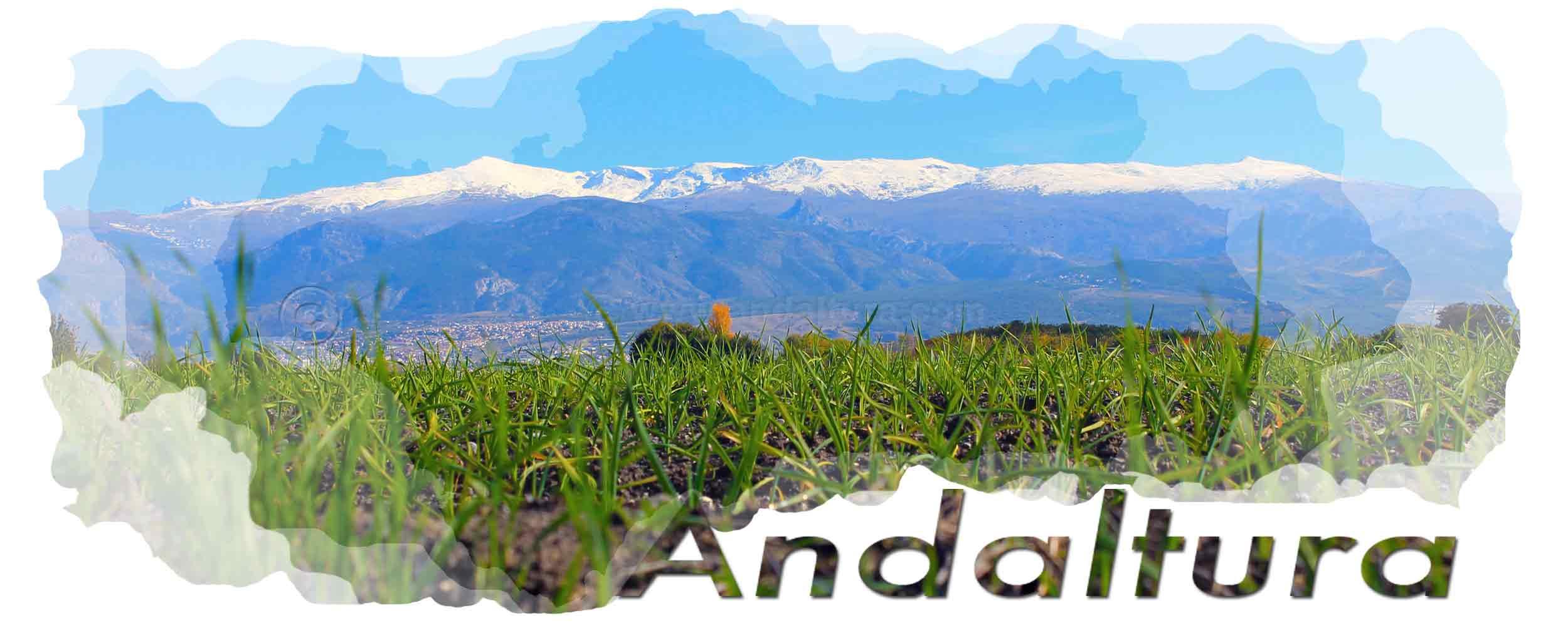 Cabecera del Plagio del GADL-CANT Grupo de Acción y Desarrollo Local de la Comarca de Antequera de Andaltura. Sierra Nevada desde la Vega de Granada