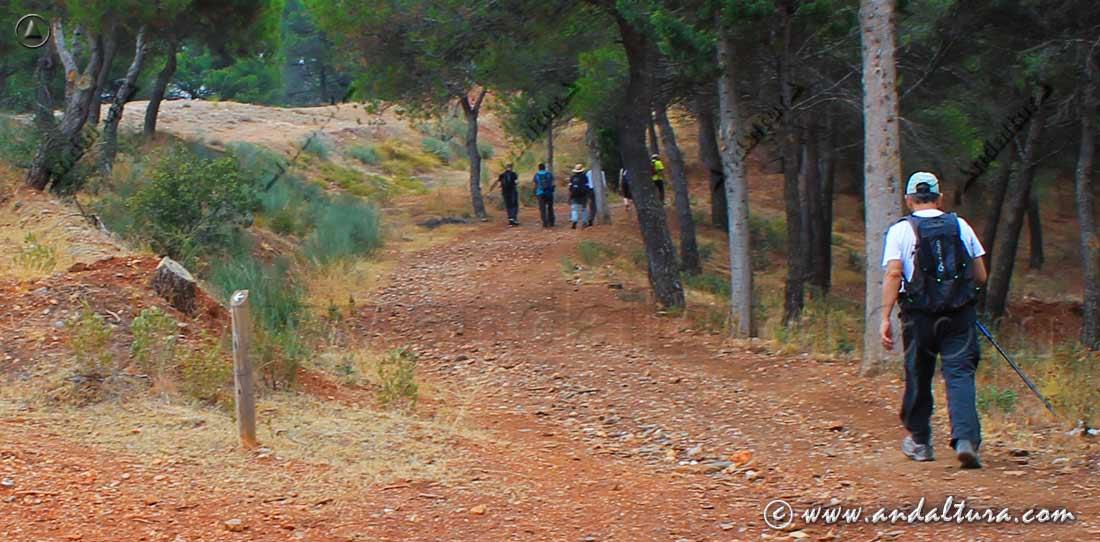 Ruta de Senderismo por Andalucia haciendo un sendero señalizado