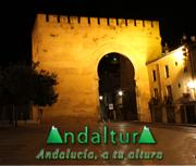 Banner vinculo Callejero de Granada de Andaltura