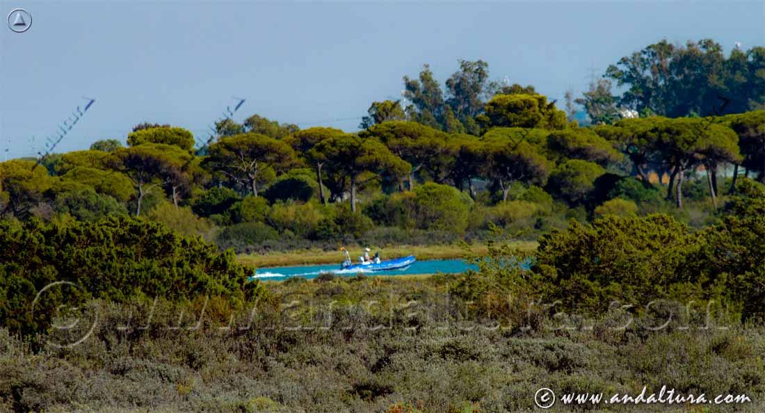Recorrido en Barca por el río de San Pedro - Bahía de Cádiz -