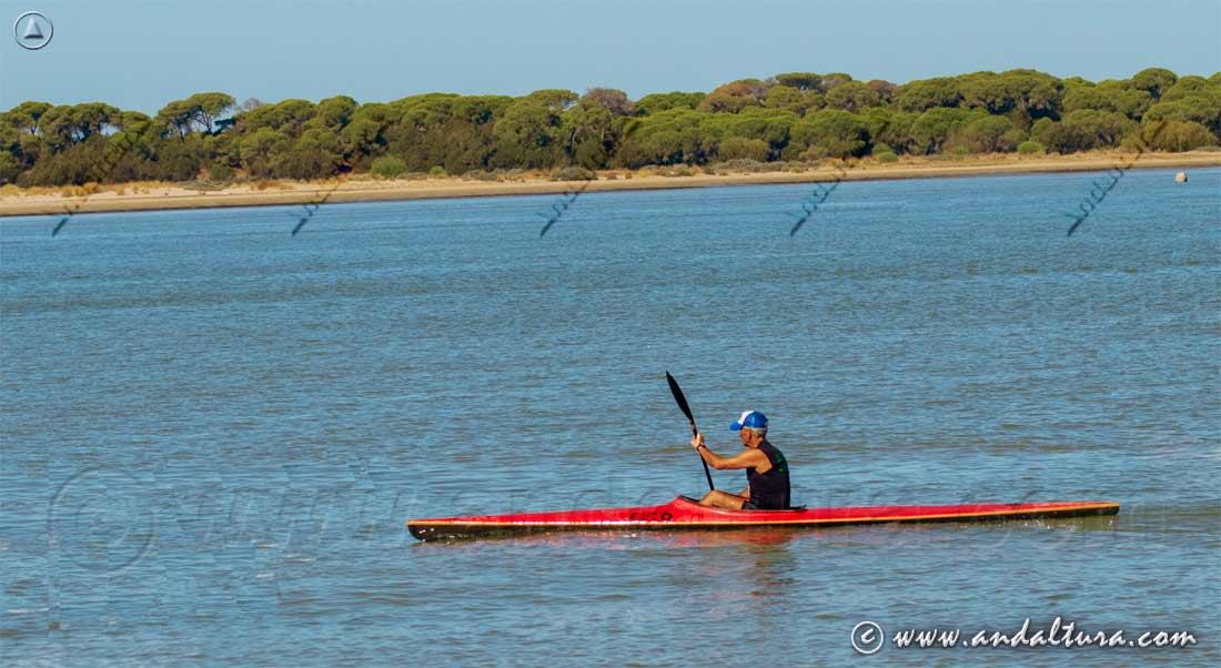 Recorrido en canoa en la Desembocadura del río Guadalquivir