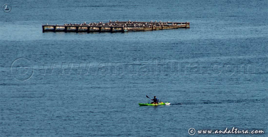 Recorrido en canoa por la Ensenada de Getares - Mar Mediterráneo -