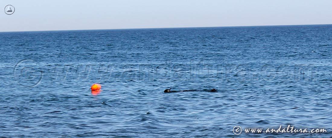 Submarinismo en Andalucía - Cabo de Gata - San José