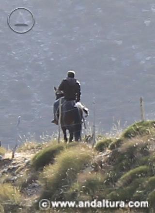Actividades en Andalucía - Rutas a Caballo