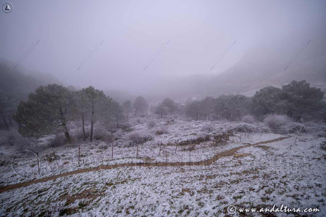 Nieve en el Puerto del Boyar