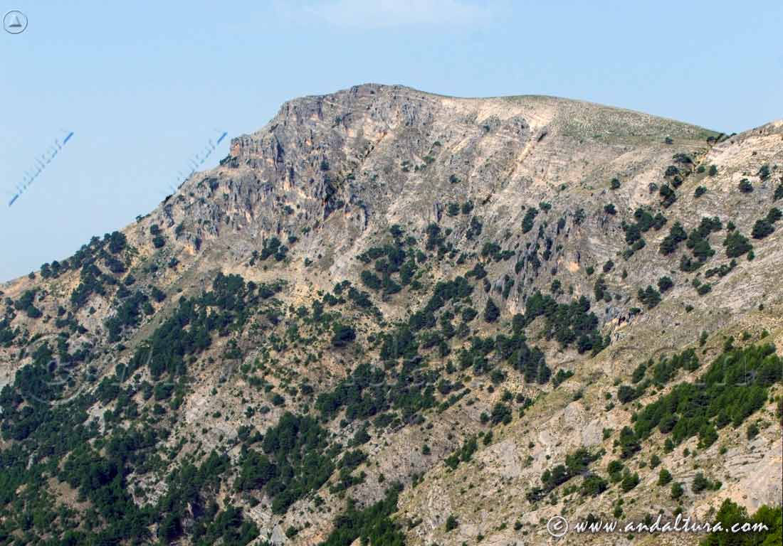 Espacios Naturales Protegidos de Andalucía - Empanada