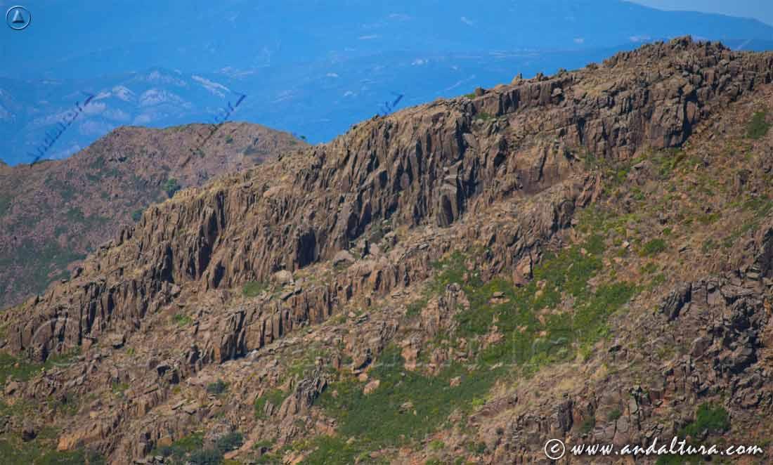 Espacios Naturales Protegidos de Andalucía - Paraje Natural Los Reales de Sierra Bermeja