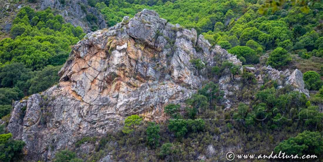 Espacios Naturales Protegidos de Andalucía - Paraje Natural Sierra Crestellina