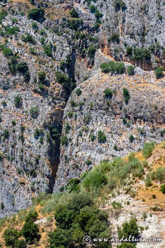 Espacios Naturales Protegidos de Andalucía - Parque Natural Sierra de Castril