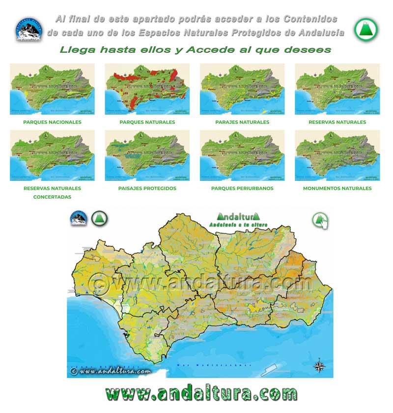 Espacios Naturales Protegidos de Andalucía - Accede a cada uno de ellos