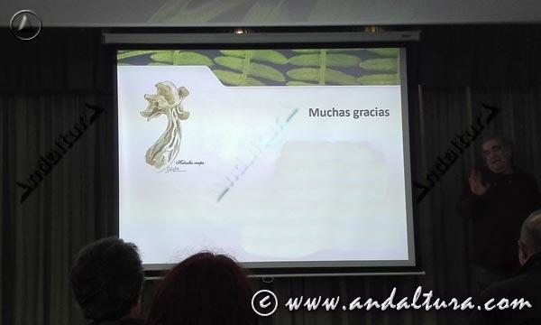 Micología en Andalucía - Actividades antes de ruta micológica -