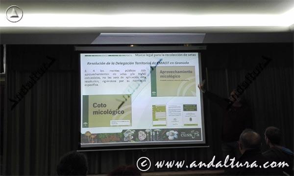Micología en Andalucía - Curso -