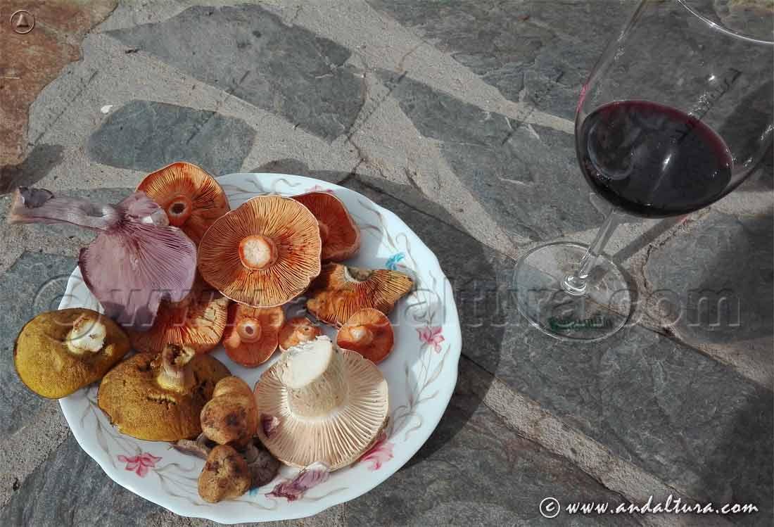 Micología en Andalucía: Pequeña degustación