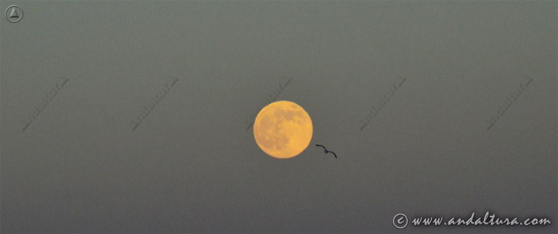 Luna llena desde el Cabo de Gata