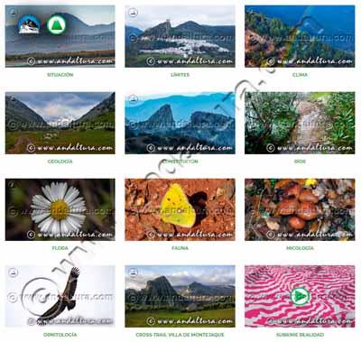 Contenidos originales de Andaltura sobre el Parque Natural Sierra de Grazalema de donde plagia el Tambor del Llano