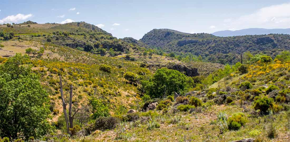 Cerro Mancilla desde la Ruta Medieval de la Alpujarra