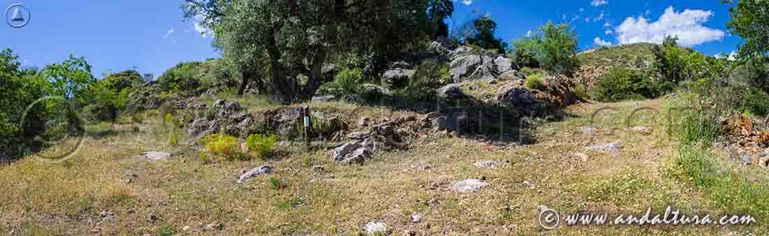 Crece de caminos llegando a Juviles - Ruta de Senderismo de la Ruta Medieval por la Alpujarra