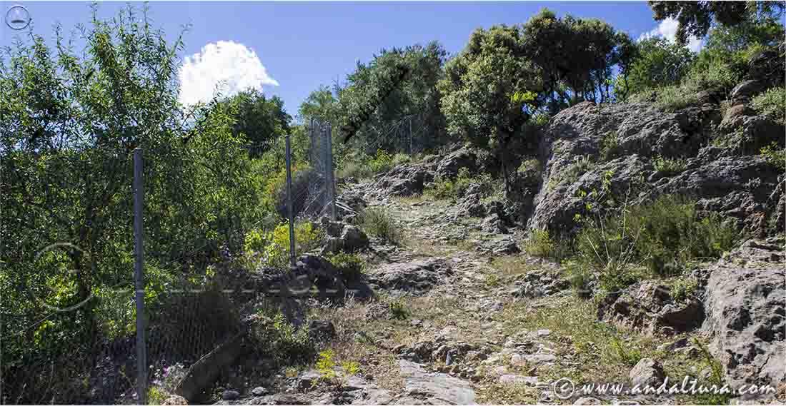 Últimas rampas de la Ruta Medieval por la Alpujarra a Juviles