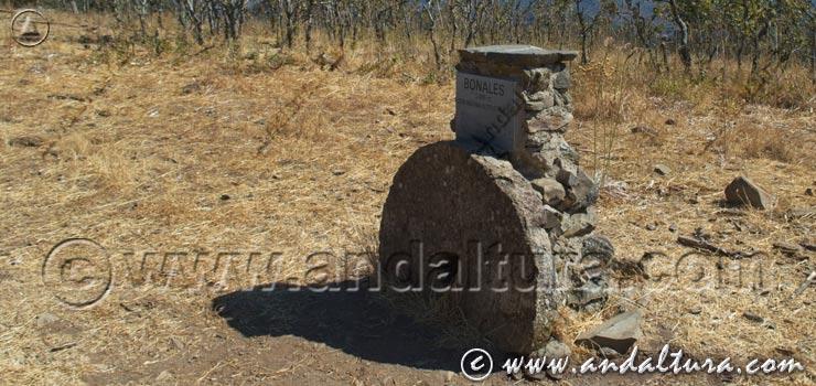 Bonales - Pico más alto de la Provincia de Huelva - Andalucía -