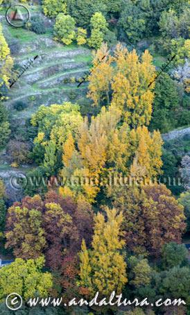 Las Mejores Rutas de Senderismo en otoño en Málaga