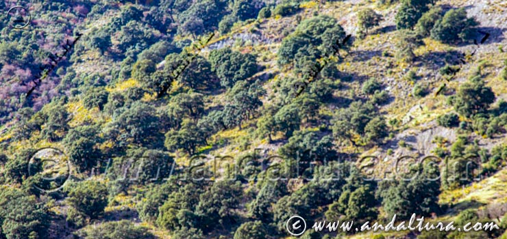 Ruta en otoño por Almería